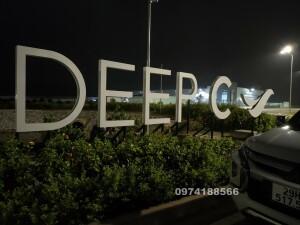 Deepc hải phòng (6)